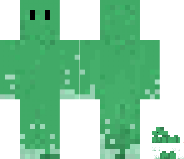 Shreeyam's covered Minecraft skin